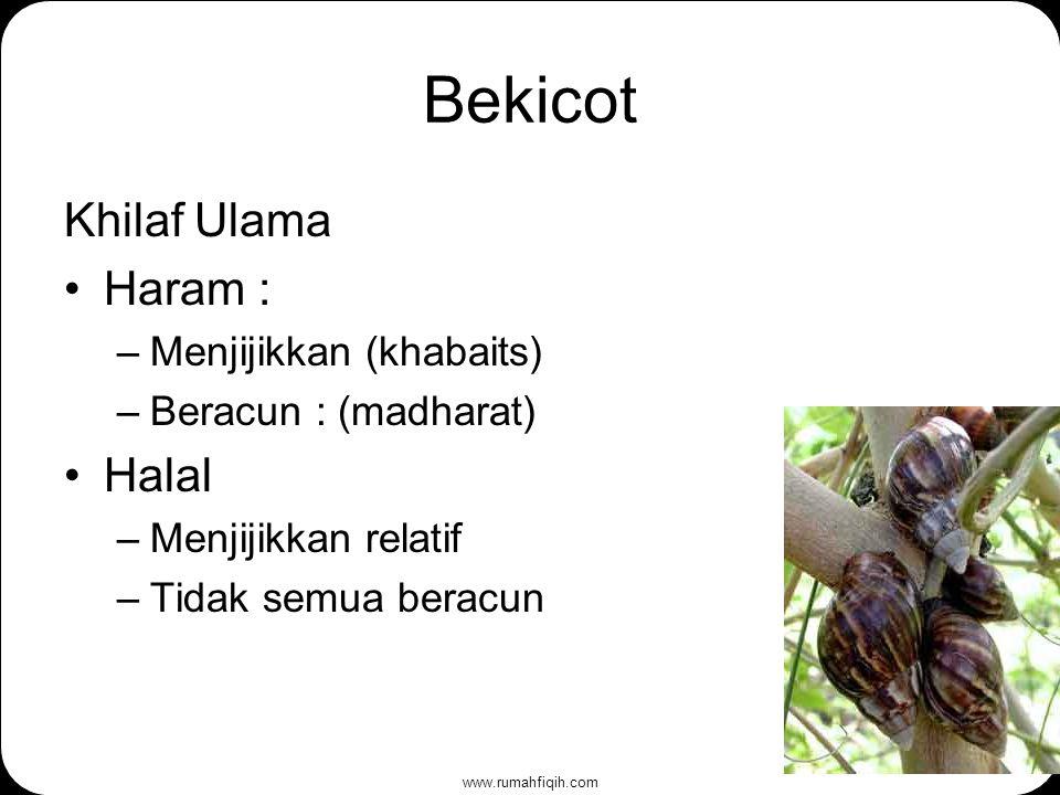 www.rumahfiqih.com Bekicot Khilaf Ulama Haram : –Menjijikkan (khabaits) –Beracun : (madharat) Halal –Menjijikkan relatif –Tidak semua beracun
