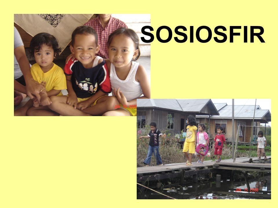 12 Parameter Sosiofir CDR (Crude Death Rate): Indonesia: thn 1980: 7,9/1000 penduduk thn 1990: 7,5/1000 penduduk  Kondisi pelayanan kesehatan CBR (Crude Birth Rate): Indonesia: thn 1980: 28,7/1000 penduduk thn 1990: 25,3/1000 penduduk