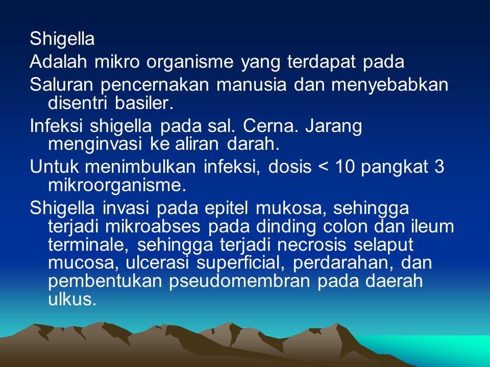 Shigella Adalah mikro organisme yang terdapat pada Saluran pencernakan manusia dan menyebabkan disentri basiler. Infeksi shigella pada sal. Cerna. Jar