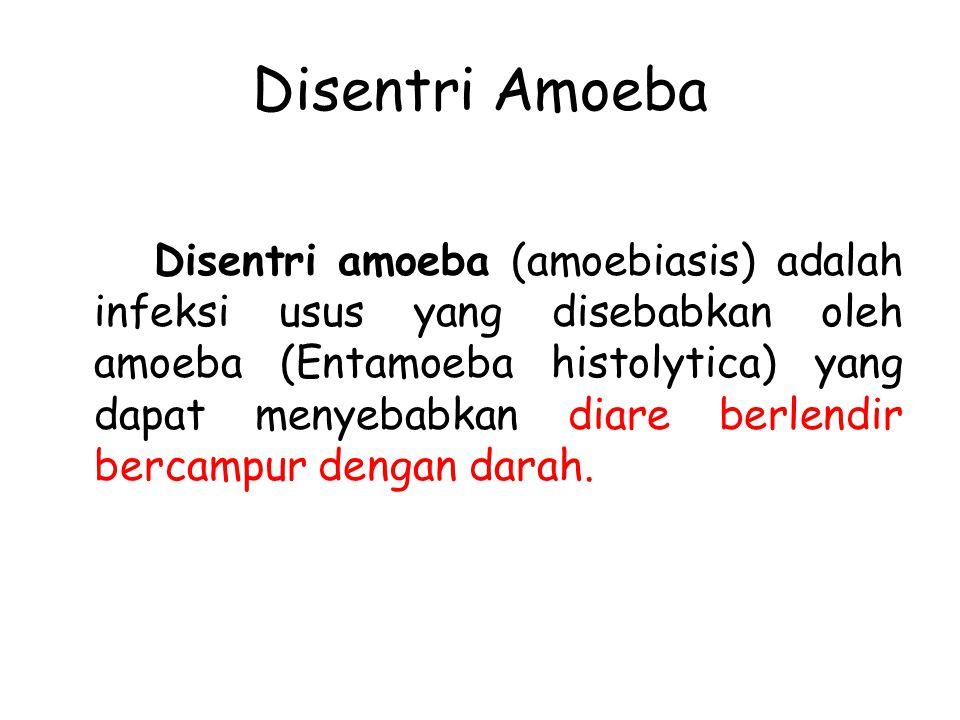 Disentri Amoeba Disentri amoeba (amoebiasis) adalah infeksi usus yang disebabkan oleh amoeba (Entamoeba histolytica) yang dapat menyebabkan diare berl