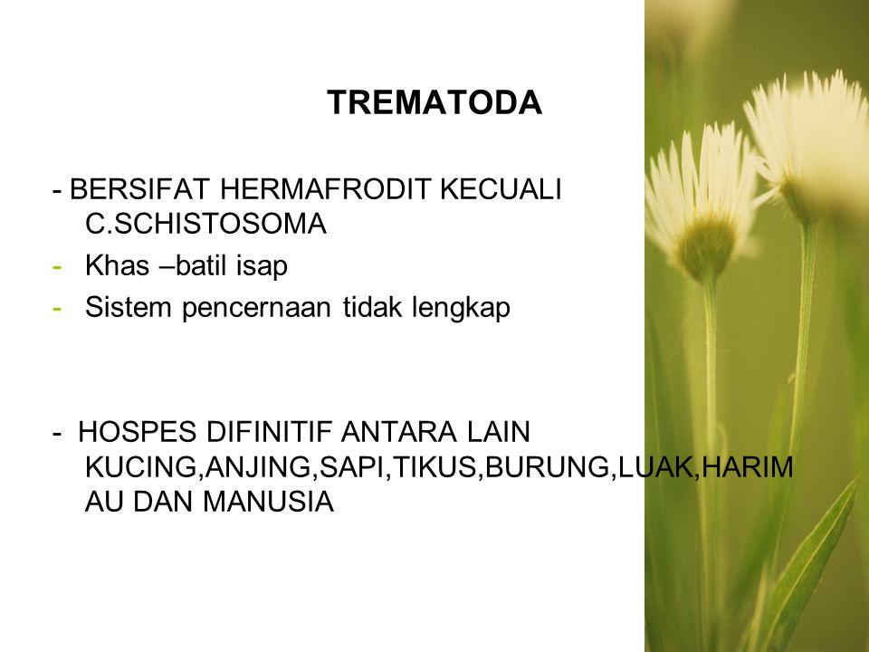 MENURUT TEMPAT HIDUPNYA CACING DEWASA DALAM TUBUH HOSPES 1.TREMATODA HATI,fasciola hepatica 2.TREMATODA USUS, echinostomatidae 3.TREMATODA PARU, paragonismus westermani 4.TREMATODA DARAH, shistosoma japanicum