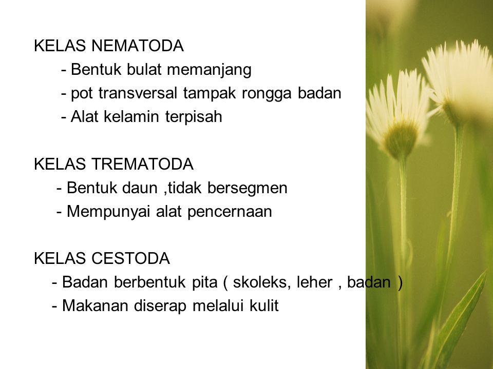 CACING TAMBANG -Necator amaricanus -Ancylostoma duodenale Hospes : manusia Penyakit : nekatoriasis dan ankilostomiasis