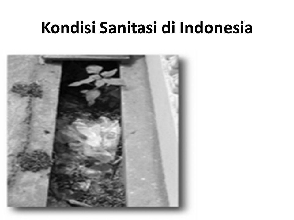 Kondisi Sanitasi di Indonesia