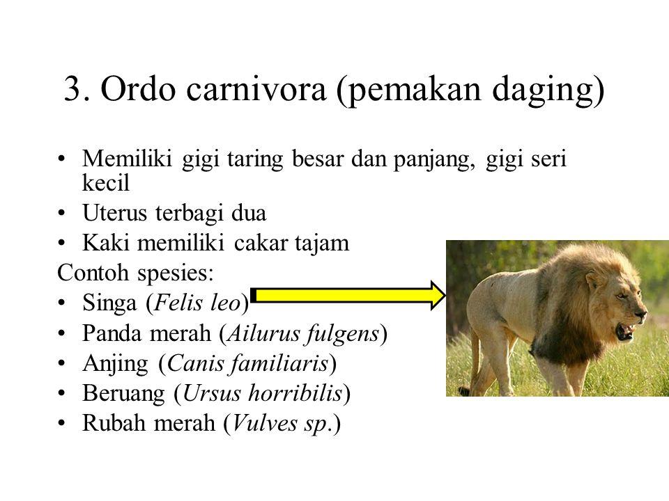 2. Ordo Insectivora (mamalia pemakan insecta) Memiliki ciri berjari lima dan memiliki gigi runcing Contoh spesies: Tikus pohon (Tupaia javanica) Tikus