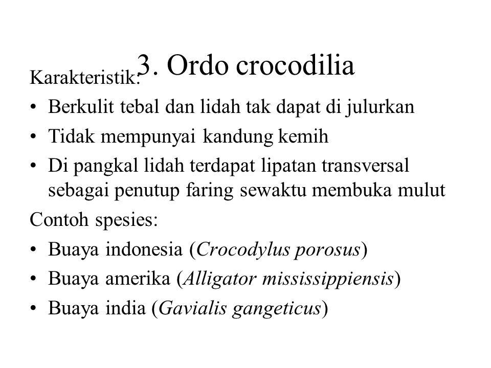 2. Ordo Chelonia Karakteristik: Tubuh pendek dan lebar di lindungi karapas dan plaston Tidak bergigi dan lidah tak dapat di julurkan. Contoh spesies: