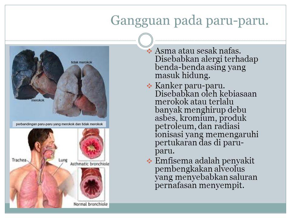 Gangguan pada paru-paru.  Asma atau sesak nafas. Disebabkan alergi terhadap benda-benda asing yang masuk hidung.  Kanker paru-paru. Disebabkan oleh