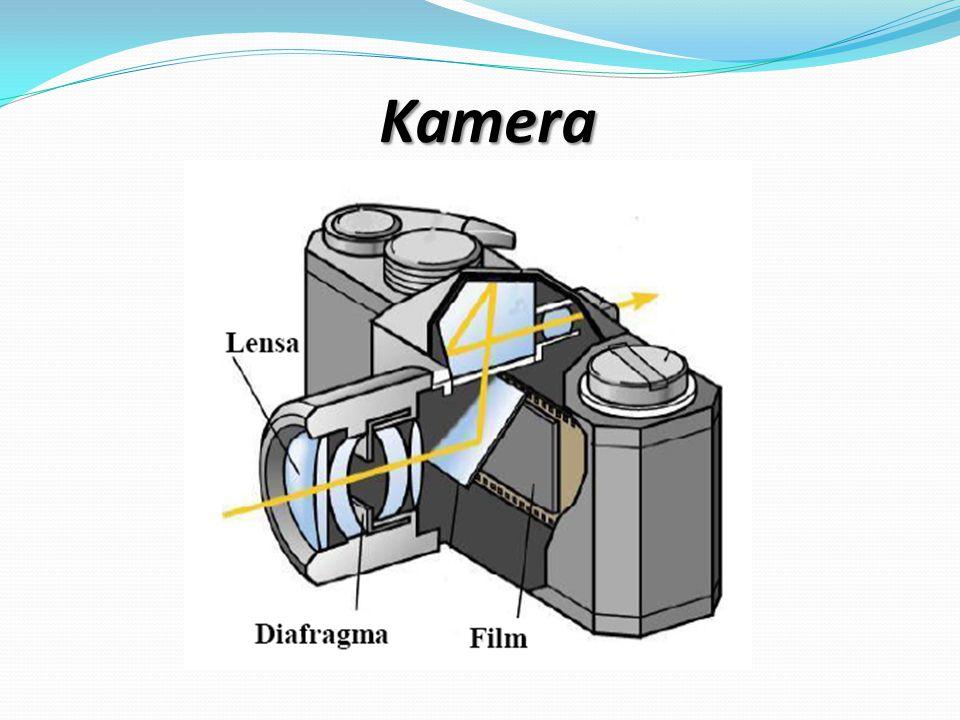 2F ob F ob F ob 2F ob F ok PEMBENTUKAN BAYANGAN PADA MIKROSKOP Lensa Obyektif Lensa Okuler SIFAT BAYANGAN Nyata, Terbalik, DiperbesarLensa Obyektif : Maya, Terbalik, Diperbesar Lensa Okuler :