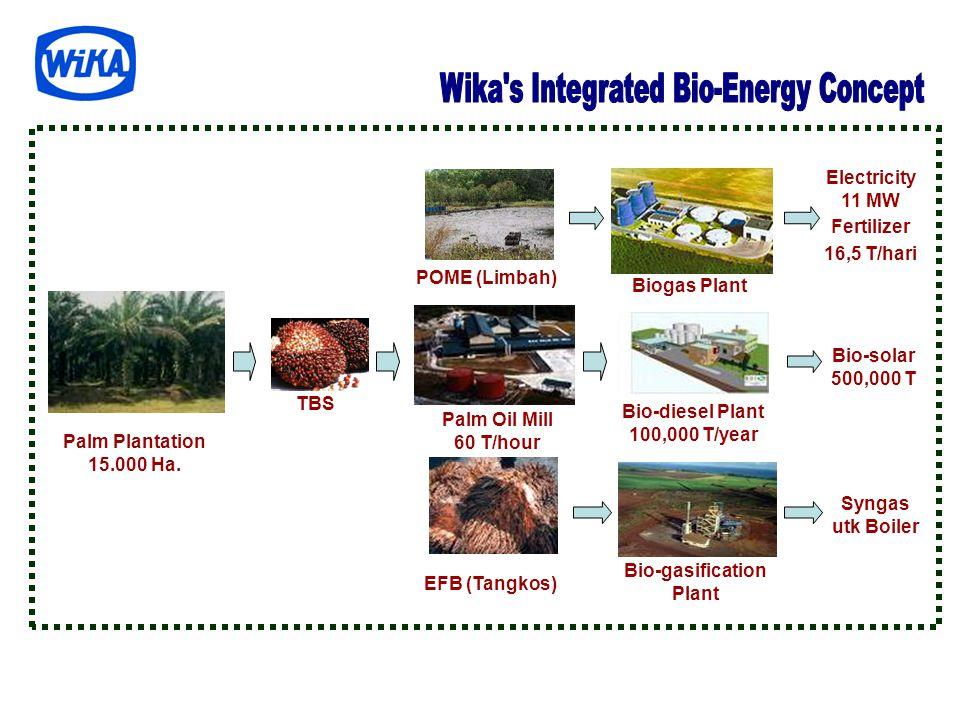 Palm Plantation 15.000 Ha. EFB (Tangkos) POME (Limbah) Palm Oil Mill 60 T/hour Biogas Plant Bio-gasification Plant Bio-diesel Plant 100,000 T/year TBS