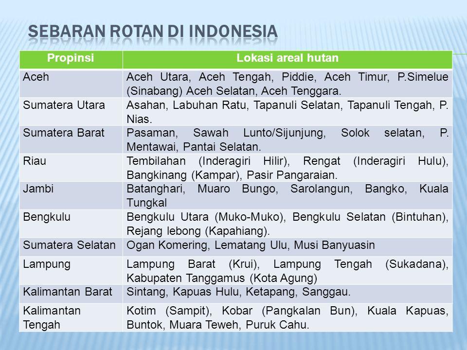 PropinsiLokasi areal hutan AcehAceh Utara, Aceh Tengah, Piddie, Aceh Timur, P.Simelue (Sinabang) Aceh Selatan, Aceh Tenggara. Sumatera UtaraAsahan, La