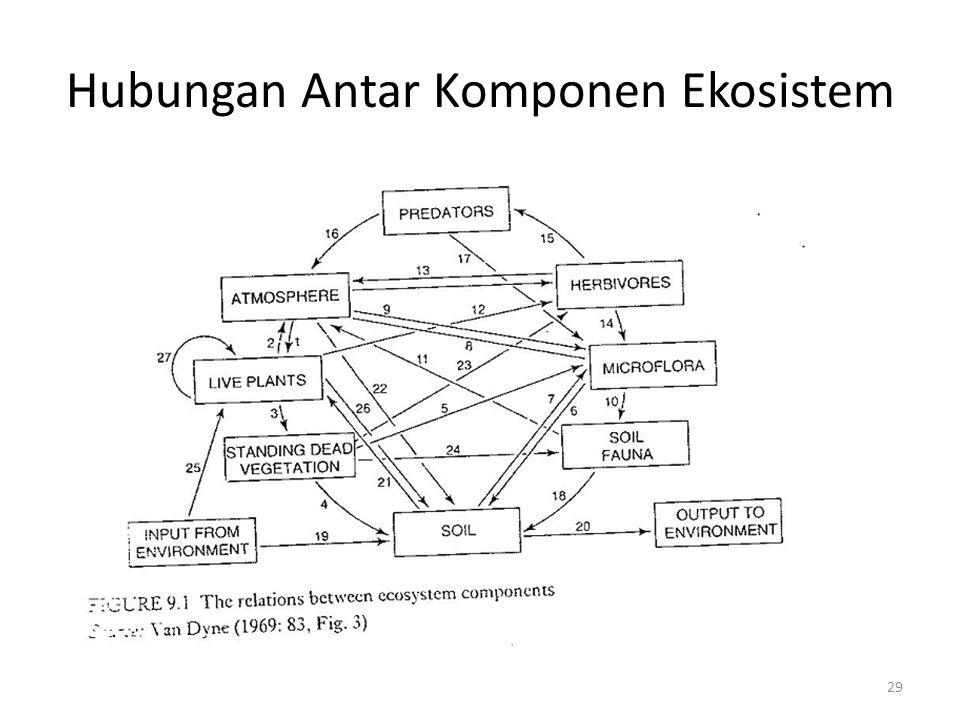 Hubungan Antar Komponen Ekosistem 29