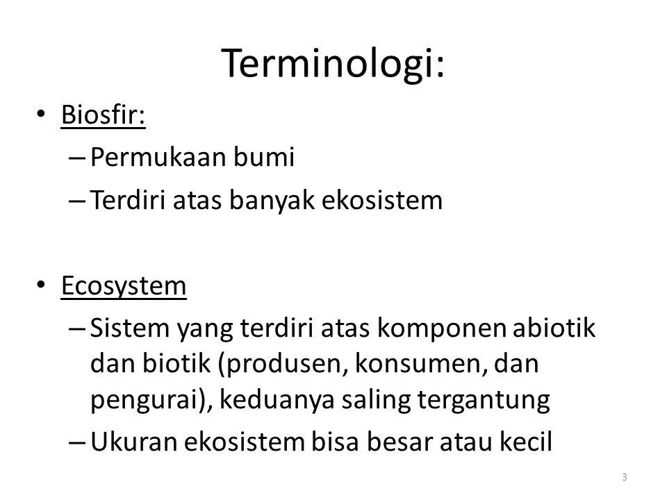 Terminologi: Biosfir: – Permukaan bumi – Terdiri atas banyak ekosistem Ecosystem – Sistem yang terdiri atas komponen abiotik dan biotik (produsen, kon