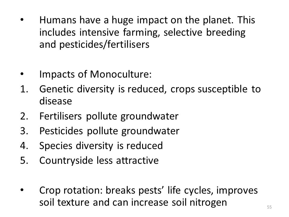 Humans have a huge impact on the planet. This includes intensive farming, selective breeding and pesticides/fertilisers Impacts of Monoculture: 1.Gene