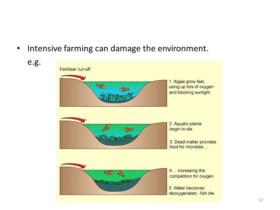Intensive farming can damage the environment. e.g. 57