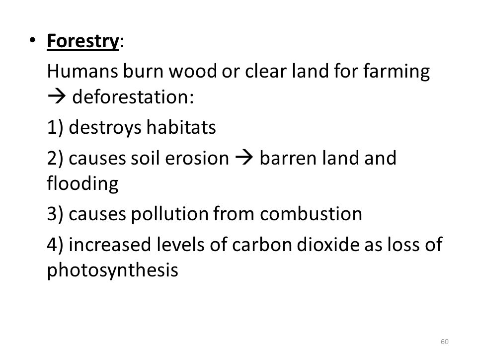 Forestry: Humans burn wood or clear land for farming  deforestation: 1) destroys habitats 2) causes soil erosion  barren land and flooding 3) causes