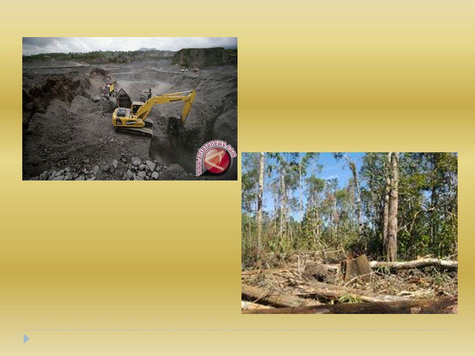 Penebangan hutan  Penebangan hutan yang liar mengurangi fungsi hutan sebagai penahan air.