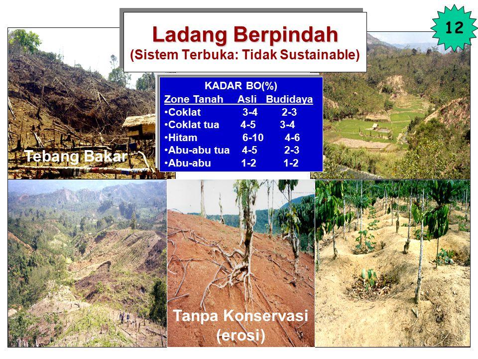 Hutan Alami Hutan Alami (Sistem Tertutup: Sustainable) 11 Pohon Karet DamarKayu BakarDurian