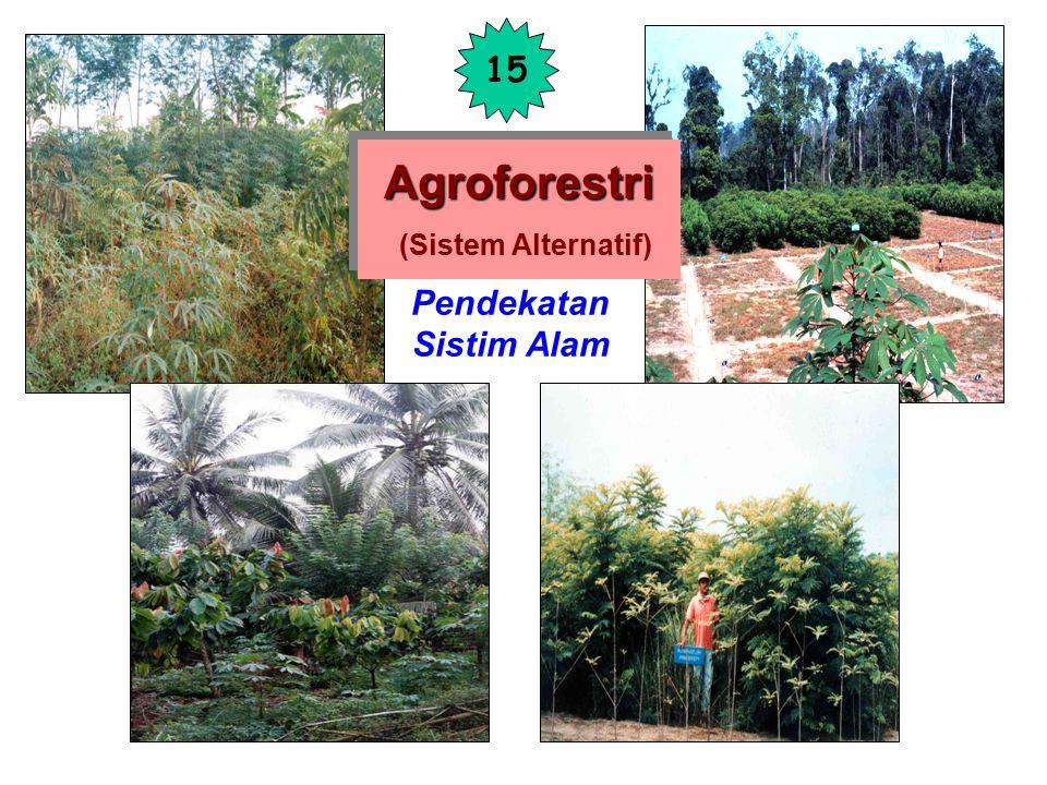 Pengaruh negatif: a = Naungan b = Kompetisi Akar Pengaruh positif: c = Seresah d = Perakaran pohon bersifat 'jaringan penyelamat' hara Agroforestri Ag