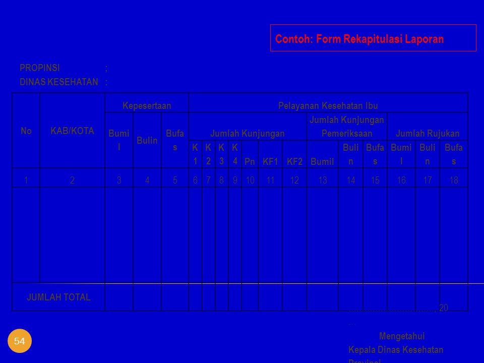 Contoh: Form Rekapitulasi Laporan NoKAB/KOTA KepesertaanPelayanan Kesehatan Ibu Bumi l Bulin Bufa s Jumlah Kunjungan Jumlah Kunjungan PemeriksaanJumla