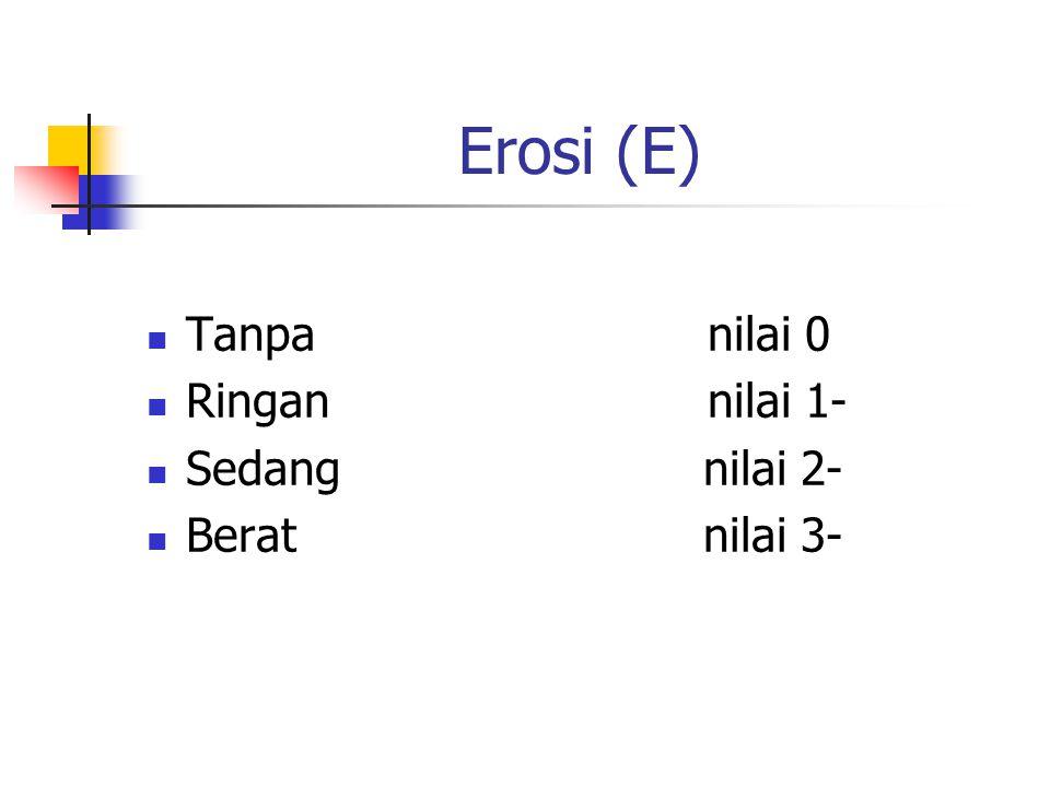 Erosi (E) Tanpa nilai 0 Ringan nilai 1- Sedang nilai 2- Berat nilai 3-