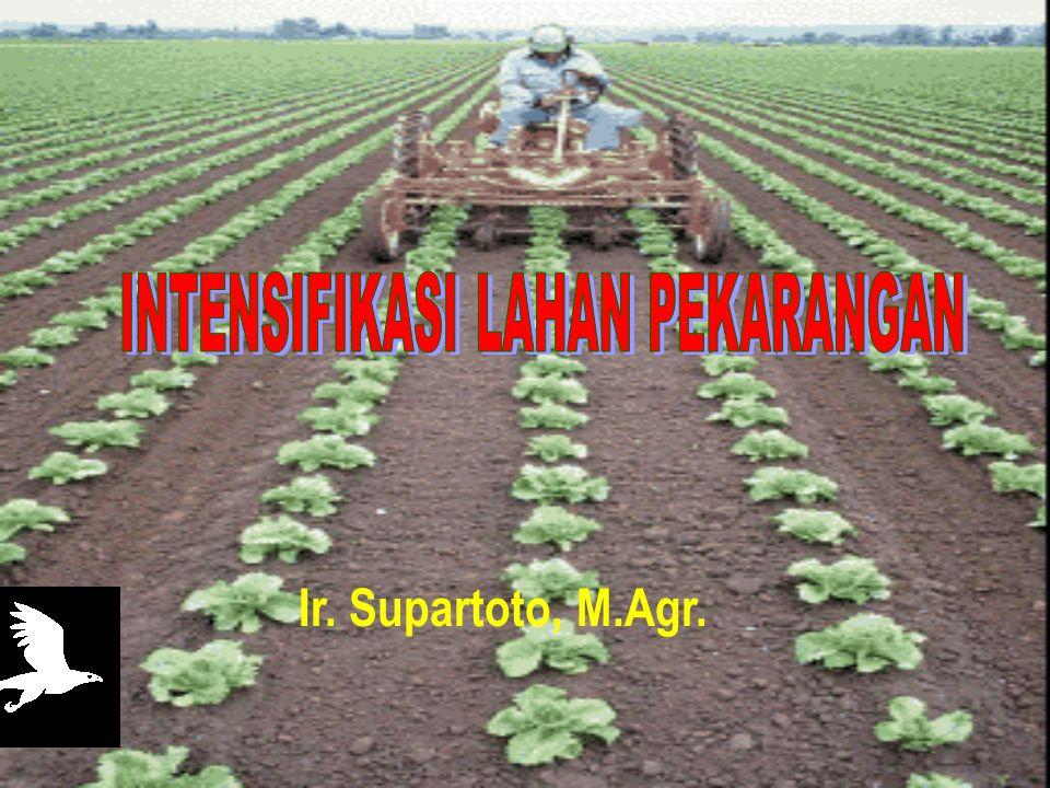 Ir. Supartoto, M.Agr.