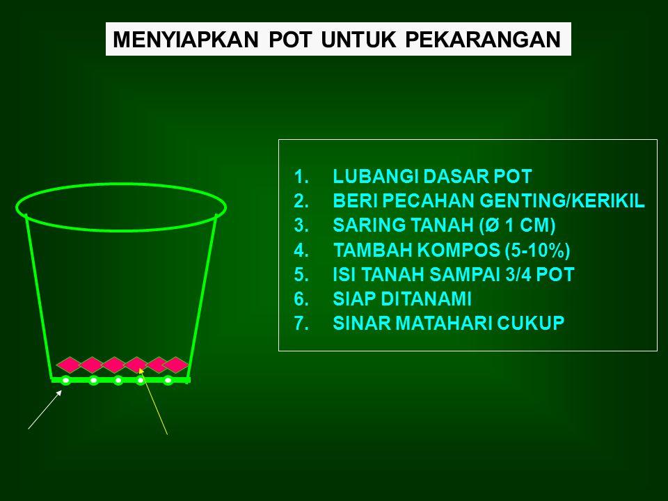MENYIAPKAN POT UNTUK PEKARANGAN 1.LUBANGI DASAR POT 2.BERI PECAHAN GENTING/KERIKIL 3.SARING TANAH (Ø 1 CM) 4.TAMBAH KOMPOS (5-10%) 5.ISI TANAH SAMPAI