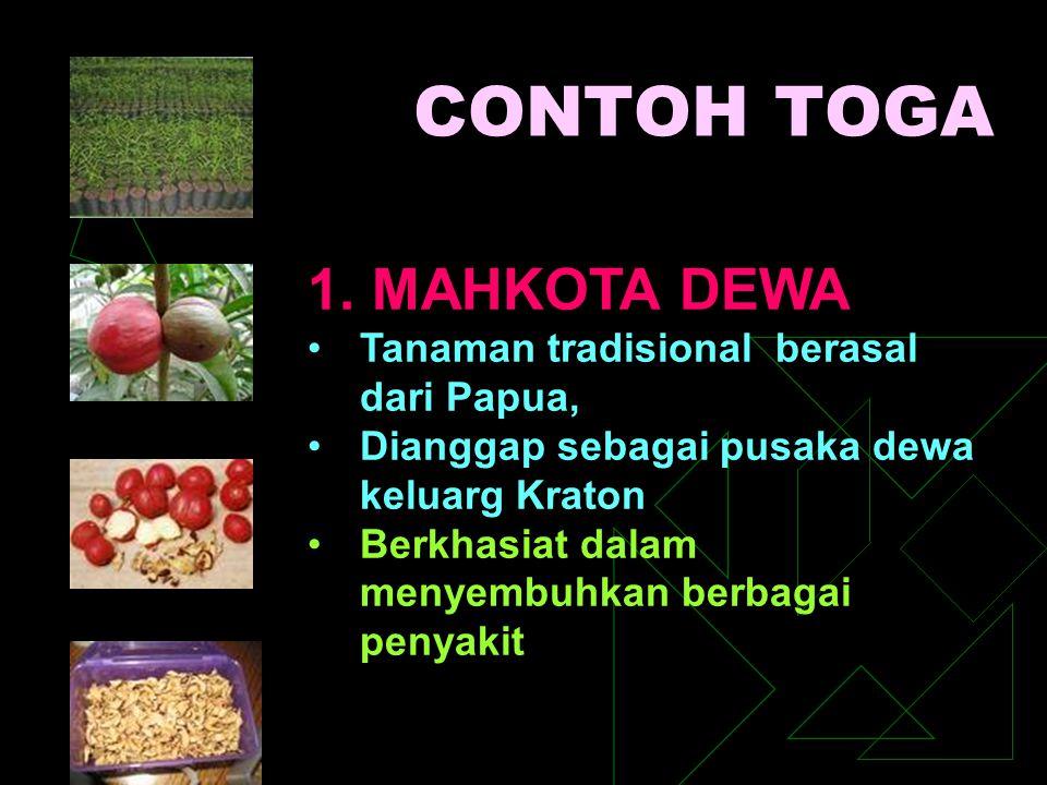 CONTOH TOGA 1. MAHKOTA DEWA Tanaman tradisional berasal dari Papua, Dianggap sebagai pusaka dewa keluarg Kraton Berkhasiat dalam menyembuhkan berbagai