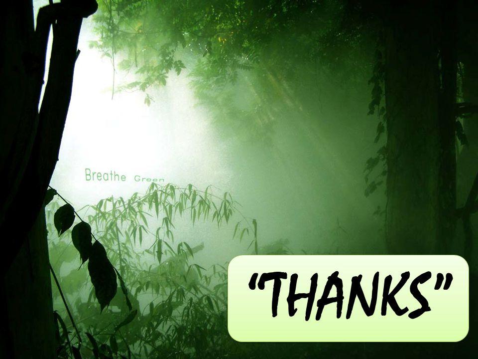 """THANKS"""