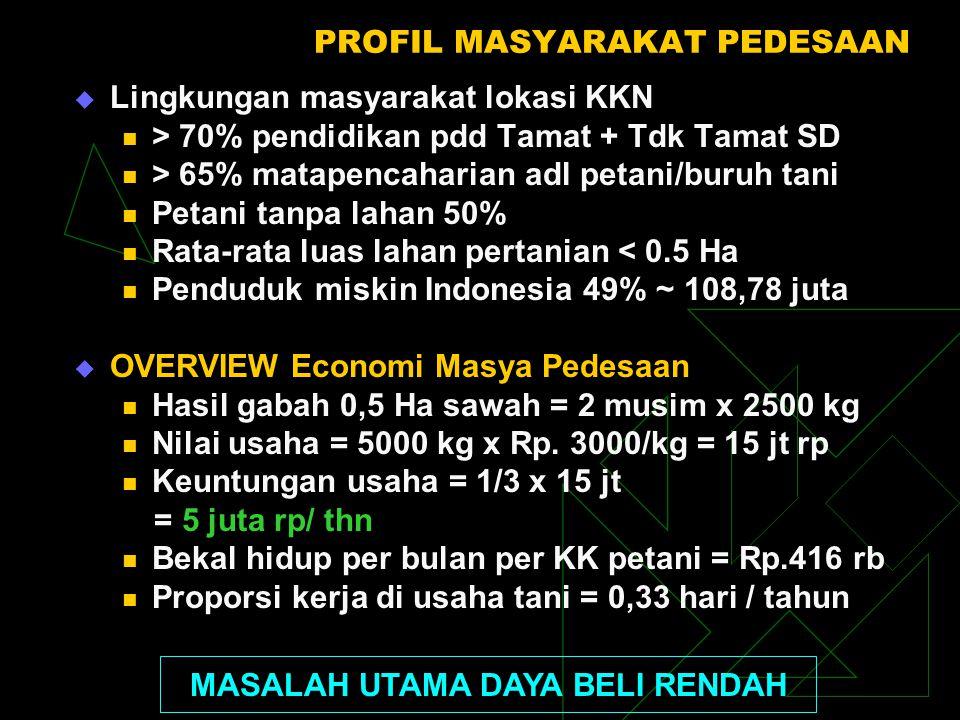PROFIL MASYARAKAT PEDESAAN  Lingkungan masyarakat lokasi KKN > 70% pendidikan pdd Tamat + Tdk Tamat SD > 65% matapencaharian adl petani/buruh tani Pe