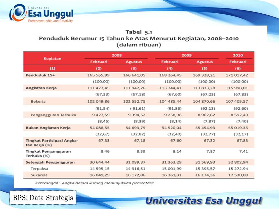 BPS: Data Strategis