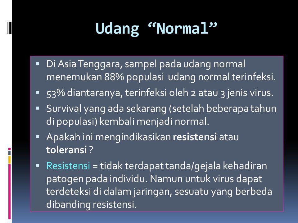 Udang Normal  Di Asia Tenggara, sampel pada udang normal menemukan 88% populasi udang normal terinfeksi.