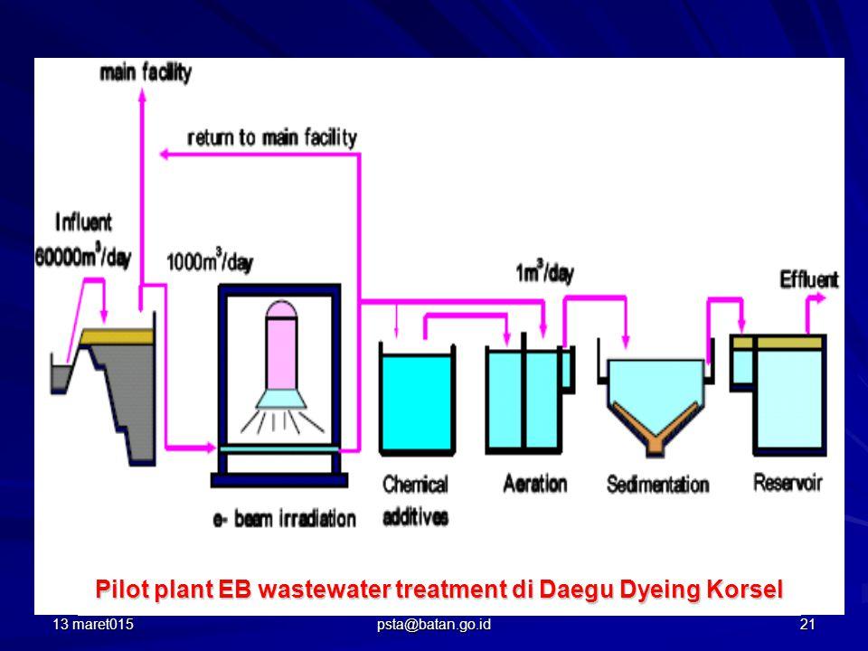 Pilot plant EB wastewater treatment di Daegu Dyeing Korsel 13 maret01521 psta@batan.go.id