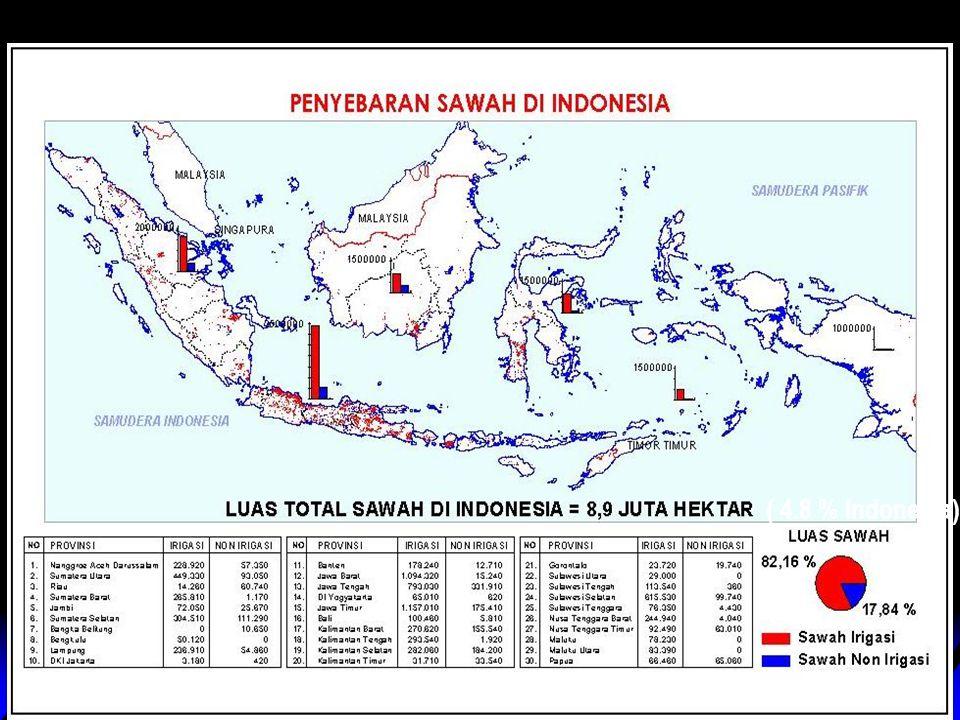 nuhfil hanani2 ( 4.8 % Indonesia)