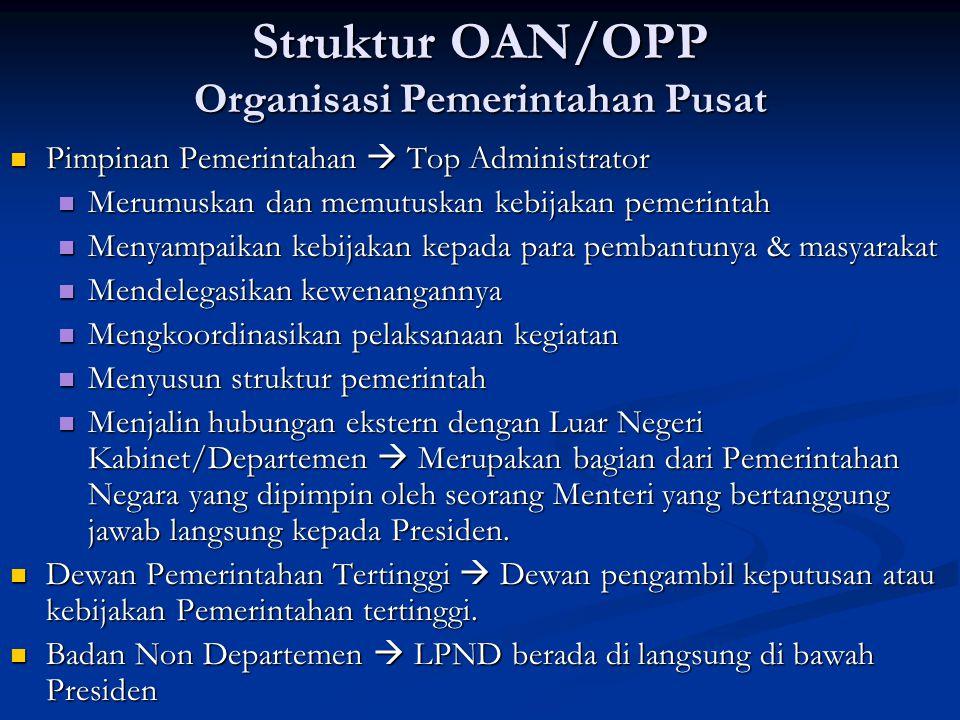 Struktur OAN/OPP Organisasi Pemerintahan Pusat Pimpinan Pemerintahan  Top Administrator Pimpinan Pemerintahan  Top Administrator Merumuskan dan memu