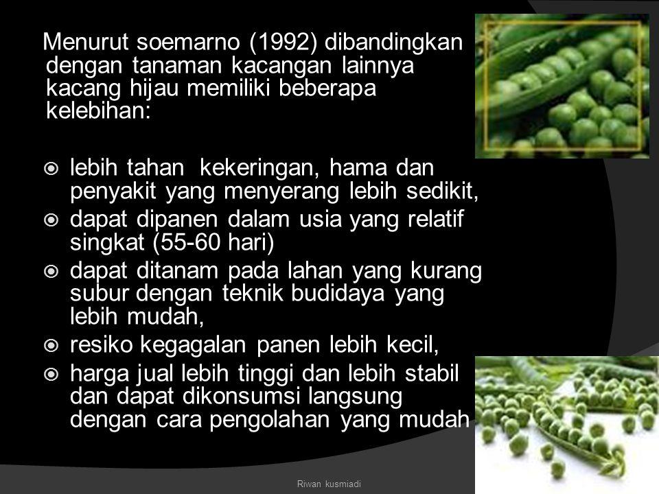Menurut soemarno (1992) dibandingkan dengan tanaman kacangan lainnya kacang hijau memiliki beberapa kelebihan:  lebih tahan kekeringan, hama dan peny