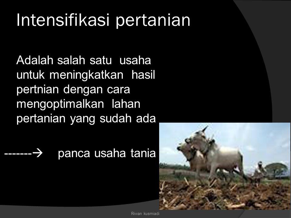 Intensifikasi pertanian Adalah salah satu usaha untuk meningkatkan hasil pertnian dengan cara mengoptimalkan lahan pertanian yang sudah ada ------- 