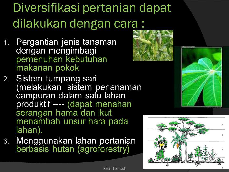 Diversifikasi pertanian dapat dilakukan dengan cara : 1. Pergantian jenis tanaman dengan mengimbagi pemenuhan kebutuhan makanan pokok 2. Sistem tumpan