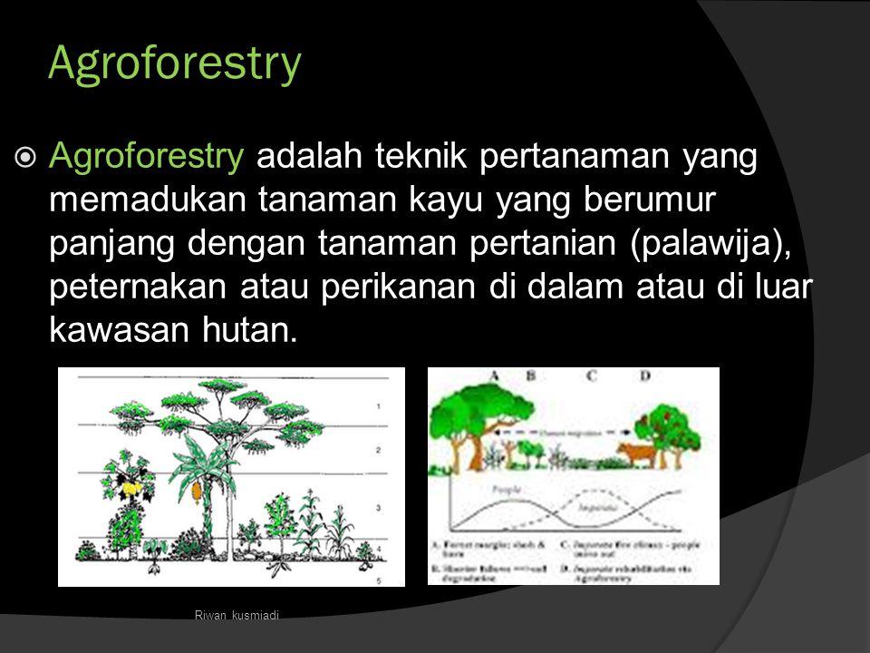 Agroforestry  Agroforestry adalah teknik pertanaman yang memadukan tanaman kayu yang berumur panjang dengan tanaman pertanian (palawija), peternakan