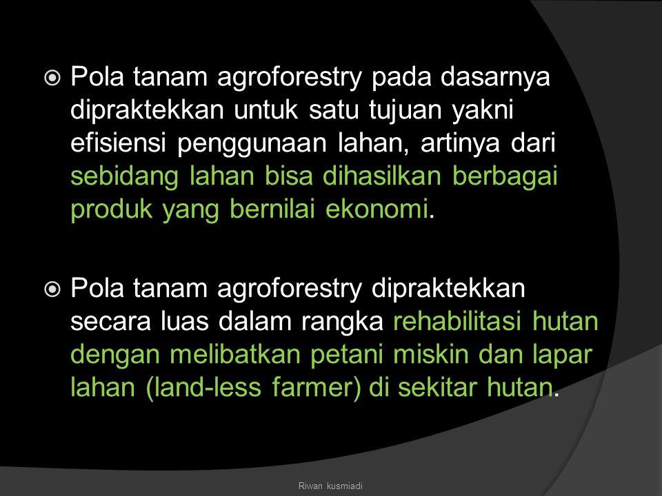  Pola tanam agroforestry pada dasarnya dipraktekkan untuk satu tujuan yakni efisiensi penggunaan lahan, artinya dari sebidang lahan bisa dihasilkan b