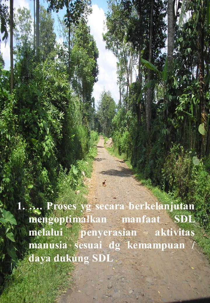 The Market and Land Use Why is a particular piece of land used in aparticular way .