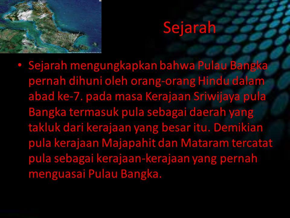 Sejarah Sejarah mengungkapkan bahwa Pulau Bangka pernah dihuni oleh orang-orang Hindu dalam abad ke-7. pada masa Kerajaan Sriwijaya pula Bangka termas