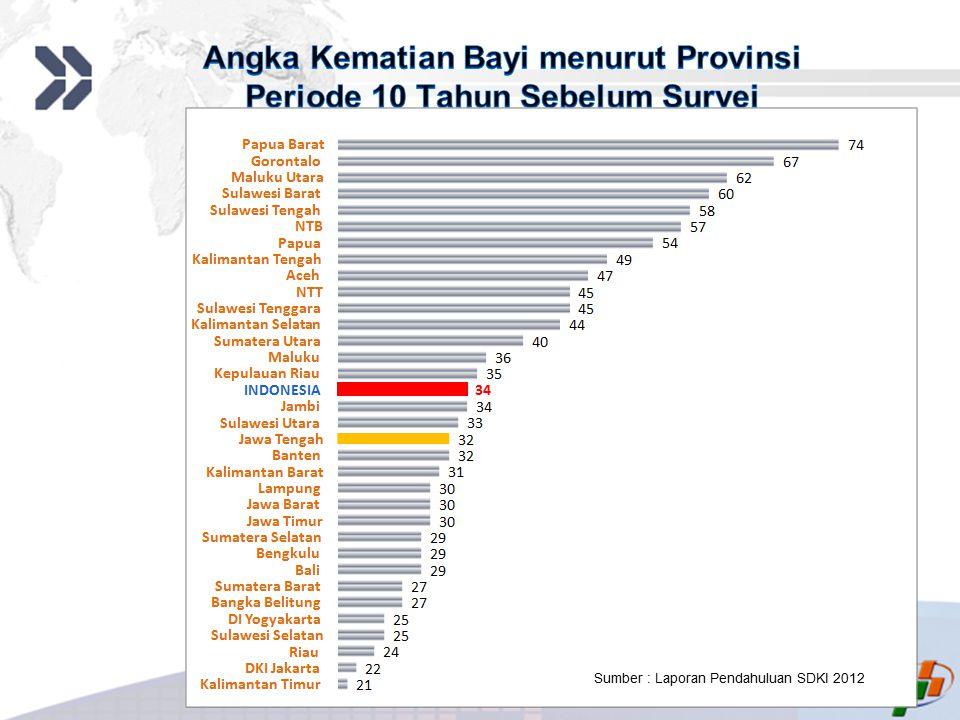 Add your company slogan LOGO INDONESIA34 Sumber : Laporan Pendahuluan SDKI 2012