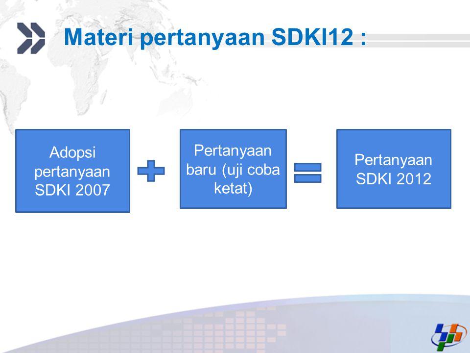 Add your company slogan LOGO Materi pertanyaan SDKI12 : Adopsi pertanyaan SDKI 2007 Pertanyaan baru (uji coba ketat) Pertanyaan SDKI 2012