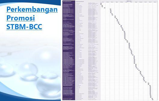Perkembangan Promosi STBM-BCC