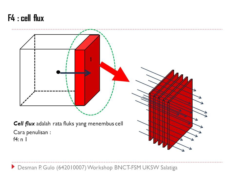 F4 : cell flux Cell flux adalah rata fluks yang menembus cell Cara penulisan : f4: n 1 1 Desman P. Gulo (642010007) Workshop BNCT-FSM UKSW Salatiga