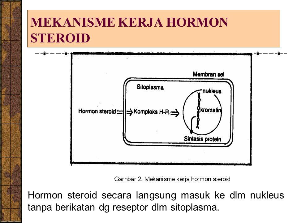 MEKANISME KERJA HORMON STEROID Hormon steroid secara langsung masuk ke dlm nukleus tanpa berikatan dg reseptor dlm sitoplasma.