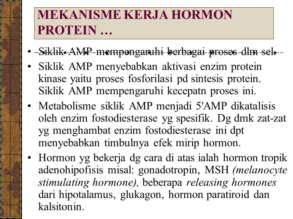 MEKANISME KERJA HORMON PROTEIN … Siklik AMP mempengaruhi berbagai proses dlm sel. Siklik AMP menyebabkan aktivasi enzim protein kinase yaitu proses fo