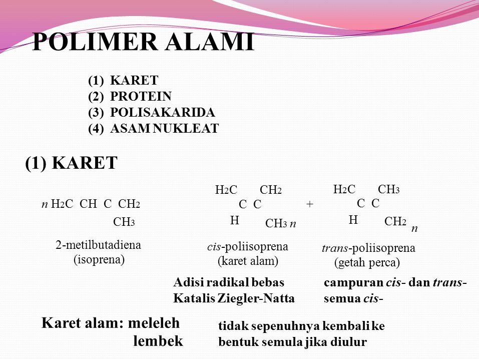 POLIMER ALAMI (1) (2) (3) (4) KARET PROTEIN POLISAKARIDA ASAM NUKLEAT (1) KARET CH 3 H H 2 C CH 2 C + H H 2 C CH 3 C CH 2 CH 3 n n 2-metilbutadiena (i