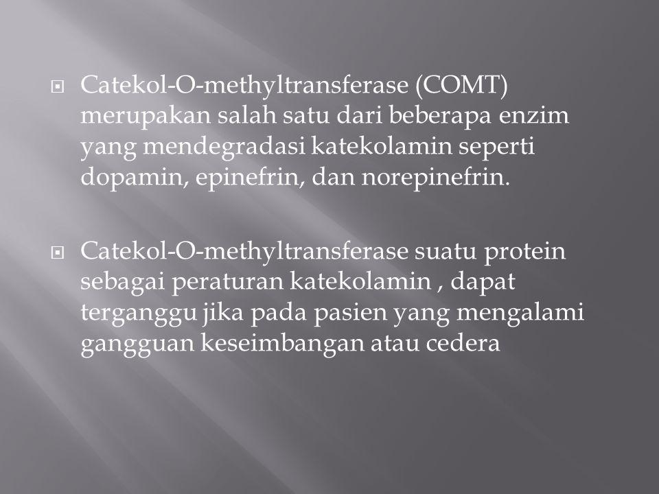  Catekol-O-methyltransferase (COMT) merupakan salah satu dari beberapa enzim yang mendegradasi katekolamin seperti dopamin, epinefrin, dan norepinefr