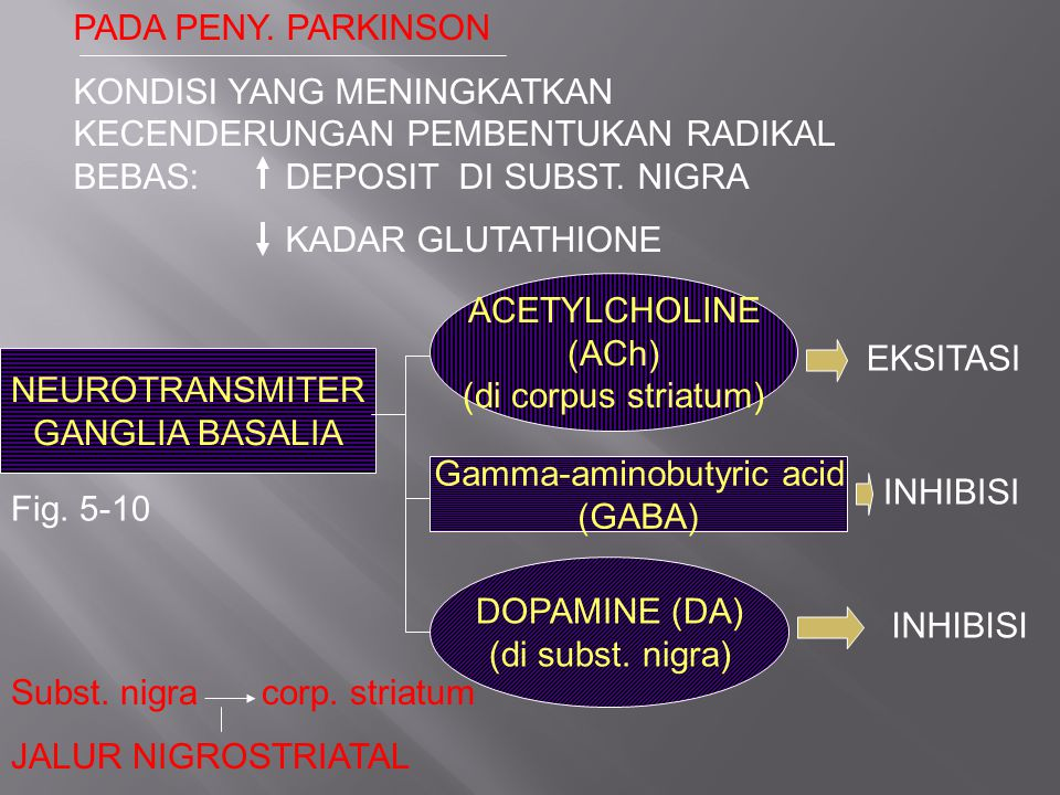 PADA PENY. PARKINSON KONDISI YANG MENINGKATKAN KECENDERUNGAN PEMBENTUKAN RADIKAL BEBAS:DEPOSIT DI SUBST. NIGRA KADAR GLUTATHIONE NEUROTRANSMITER GANGL