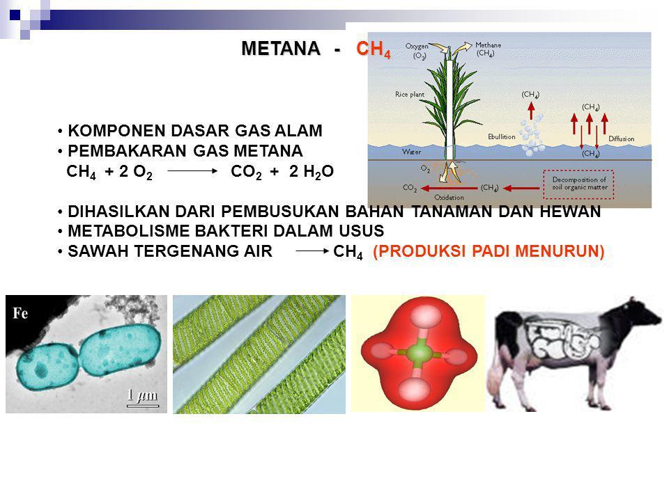 METANA - CH 4 KOMPONEN DASAR GAS ALAM PEMBAKARAN GAS METANA CH 4 + 2 O 2 CO 2 + 2 H 2 O DIHASILKAN DARI PEMBUSUKAN BAHAN TANAMAN DAN HEWAN METABOLISME
